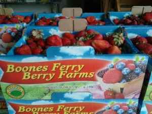 Boones Ferry Berry Farms Strawberries