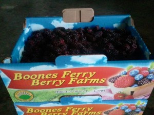 Boones Ferry Berry Farms Marionberries