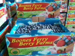 Boones Ferry Berry Farm Blueberries