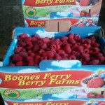 Boones Ferry Berry Farm Raspberries